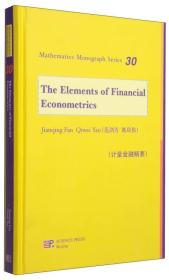 数学名著系列丛书:计量金融精要