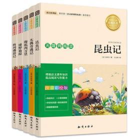 新课标必读 海底两万里+绿野仙踪+昆虫记+木偶奇遇记+格列佛游记(套装共5册)