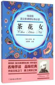 茶花女(导读版)/语文新课程标准必读