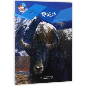 野牦牛/自然之子黑鹤原生态系列 桥梁书