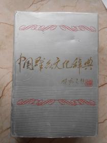 中国群众文化辞典