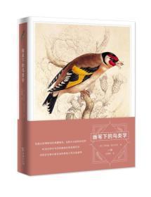 画笔下的鸟类学