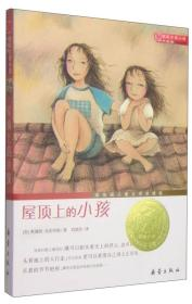 国际大奖小说(升级版):屋顶上的小孩 (纽伯瑞儿童文学奖银奖)