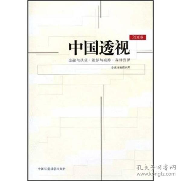 中国透视2008