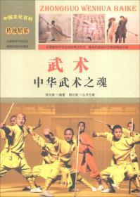 中国文化百科-武术:中华武术之魂(彩图版)/新