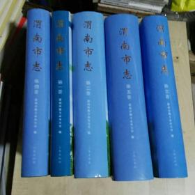 渭南市志(全五卷)