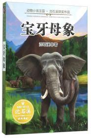 宝牙母象/动物小说王国沈石溪获奖作品