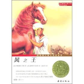 国际大奖小说:风 [美] 亨利 著,[美] 丹尼斯 绘,赵永芬 译