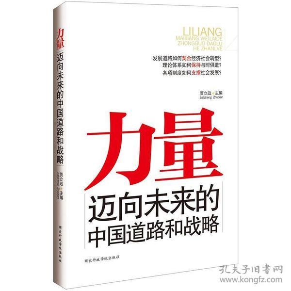 力量迈向未来的中国道路和战略