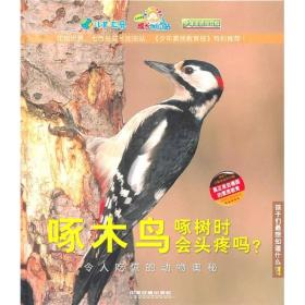 啄木鸟啄树时会头疼吗?:令人吃惊的动物奥秘