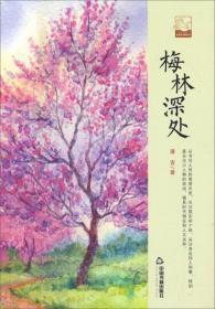 中国书籍文学馆.小说林--梅林深处【精装】