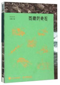 西藏的奇石 9787115389404
