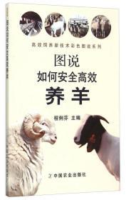 图说如何安全高效养羊