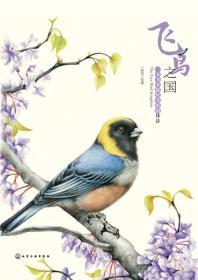 飞鸟之国:一本书掌握炫美彩铅技法