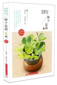 DIY种子盆栽
