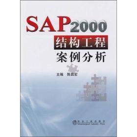 SAP2000结构工程案例分析