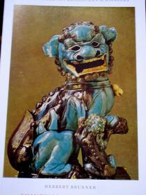 插图本(55幅)德国巴伐利亚王国维特尔斯巴赫尔王族慕尼黑王宫《宫藏中国瓷器》
