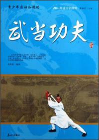 阅读中华国粹:青少年应该知道的武当功夫