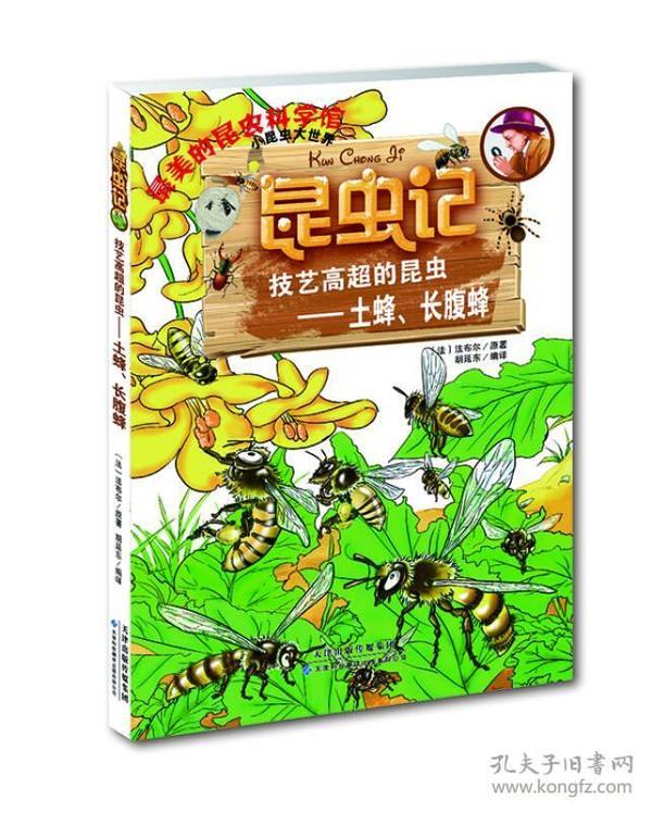 (16教育部)昆虫记:技艺高超的昆虫---土蜂,长腹蜂
