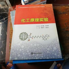 化工原理实验/21世纪高等院校化学实验教学改革示范教材