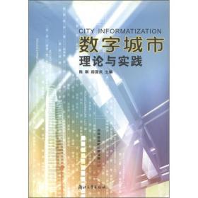 数字城市:理论与实践