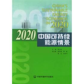 2020中国可持续能源情景