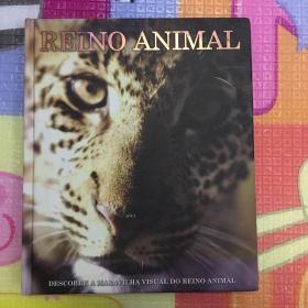 外文原版REINO ANIMAL雷诺动物