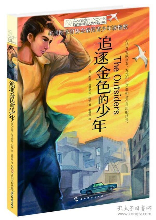常青藤国际大奖小说书系:追逐金色的少年