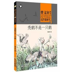 曹文轩画本——草房子·秃鹤不是一只鹤