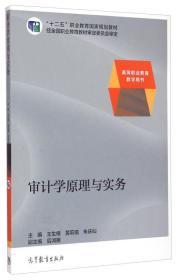 审计学原理与实务专著王生根,黄莉娟,朱庆仙主编shenjixueyuanliyushiw
