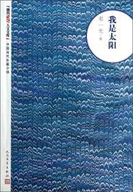 中国当代长篇小说:我是太阳