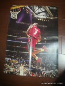篮球海报收藏  多亚尼.韦德