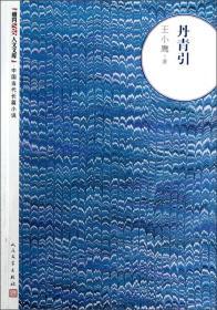 中国当代长篇小说:丹青引