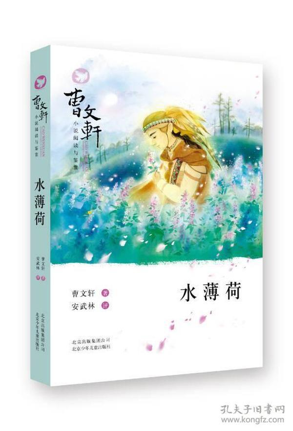 曹文轩小说阅读与鉴赏:水薄荷