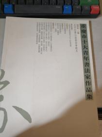 重庆市十大青年书法家作品集/