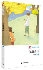 独臂男孩 曹文轩小说馆