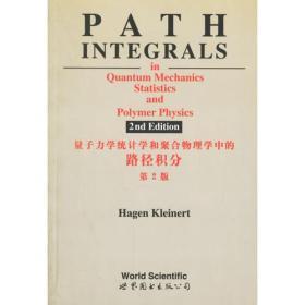 量子力学,统计学和聚合物物理学中的路径积分 第2版