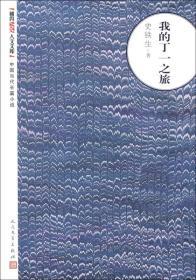 朝内166人文文库·中国当代长篇小说:我的丁一之旅