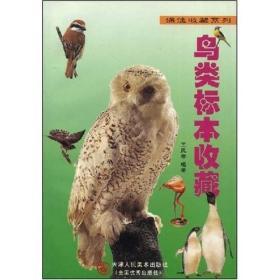鸟类标本收藏