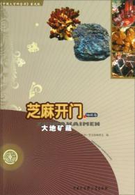 中国大百科全书普及版·芝麻开门:大地矿藏