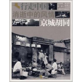 消逝中的风情-京城胡同