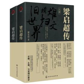 正版 梁启超传 (上下部) 解玺璋 著 晚清民初中国重大事件