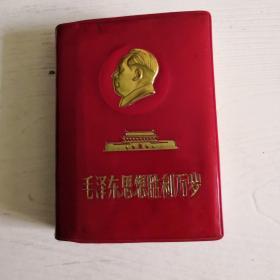 毛泽东思想胜利万岁一一林彪同志讲话摘录