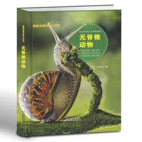 国家地理动物大百科-无脊椎动物 青少年关于动物的书恐龙书6-12岁小学生三四五年级非DK全彩图q