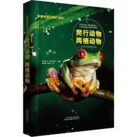 国家地理动物大百科-爬行动物两栖动物 动物百科大全书籍 青少年关于动物的书6-12岁小学生三四五年级非DK全彩图q