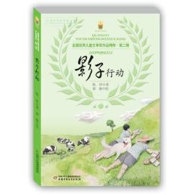 全国优秀儿童文学奖作品精粹·第二辑—— 影子行动