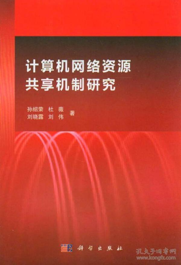 计算机网络资源共享机制研究
