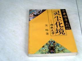 灵尘化境——佛教文学(中华佛学文化系列)【32开  1995年一版一印】