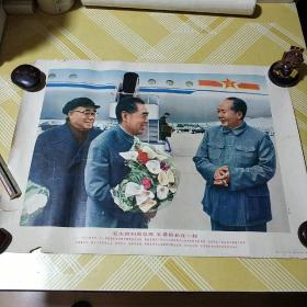 【毛主席和周总理朱委员长在一起】长52.6宽38
