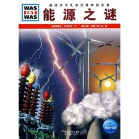 什么是什么:能源之谜